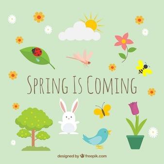 Animaux mignons et de la nature au printemps