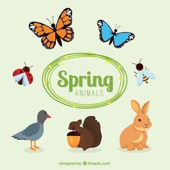 Animaux de printemps