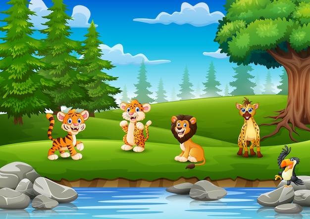 Les animaux profitent de la nature au bord de la rivière