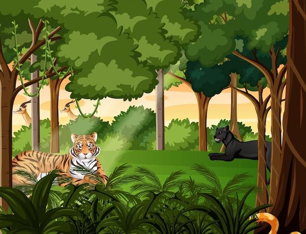 Animaux Sauvages En Arrière-plan De Paysage Forestier Vecteur Premium