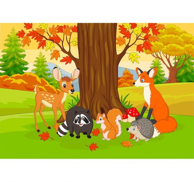 Animaux sauvages de dessin animé dans la forêt d'automne