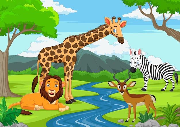 Animaux sauvages de dessin animé dans la jungle