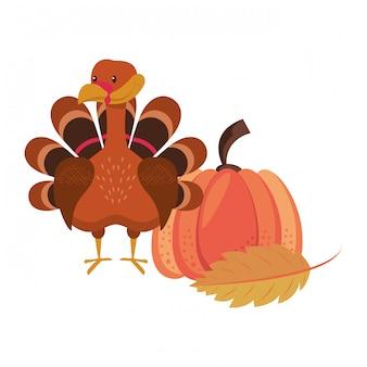 Animaux sauvages et éléments jour de thanksgiving et automne