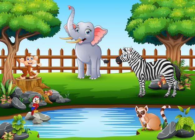Animaux sauvages jouant au bord d'un magnifique petit étang