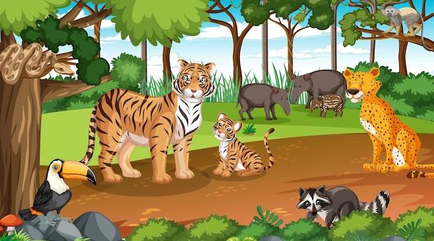 Animaux sauvages en scène forestière avec de nombreux arbres