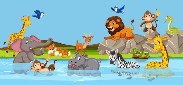 Animaux sauvages vivant à côté de la rivière