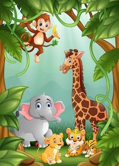 Les animaux sont dans la jungle
