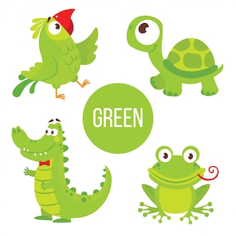 Animaux verts: tortue, alligator, grenouille, perroquet.