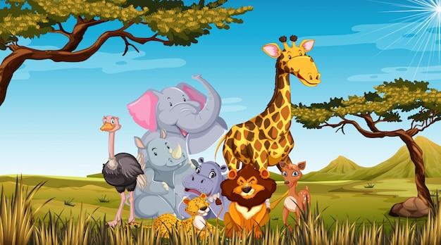 Animaux de zoo dans le fond de la nature sauvage