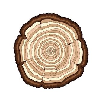 Anneaux d'arbre brun vecteur couper le tronc isolé
