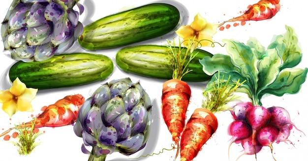 Aquarelle d'artichauts et autres légumes