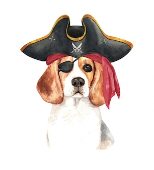 Aquarelle beagle avec bandeau de pirate et chapeau de pirate.