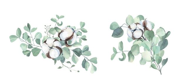 Aquarelle de boules de coton et bouquet d'eucalyptus
