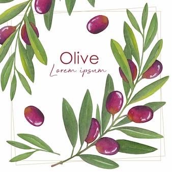 Aquarelle de branche d'olivier dessinée à la main