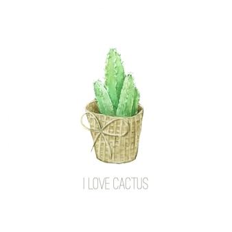 Aquarelle de cactus