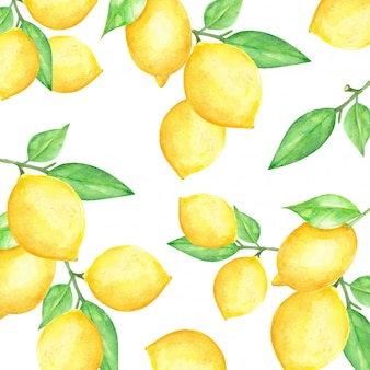 Aquarelle citron fruits