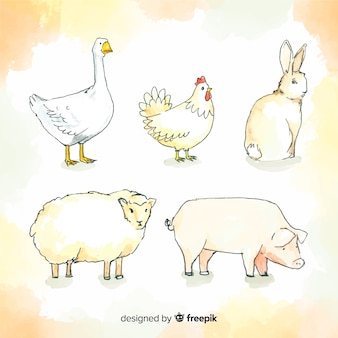 Aquarelle collection d'animaux de ferme