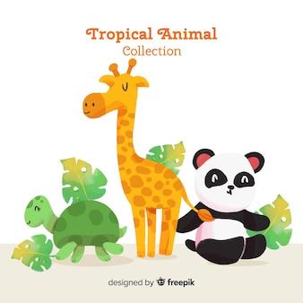 Aquarelle collection d'animaux tropicaux exotiques