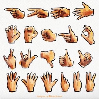 Aquarelle collection en langue des signes