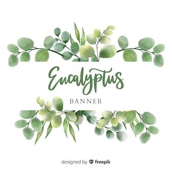 Aquarelle eucalyptus laisse bannière