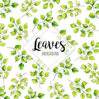Aquarelle feuilles de fond
