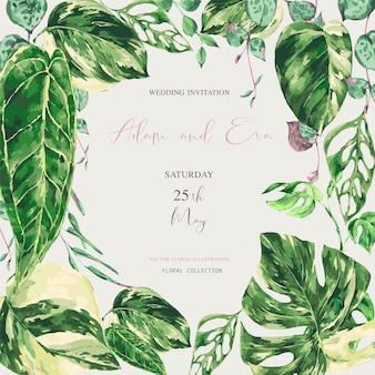 Aquarelle feuilles vertes tropicales. illustration de verdure panachée monstera, carte de mariage botanique
