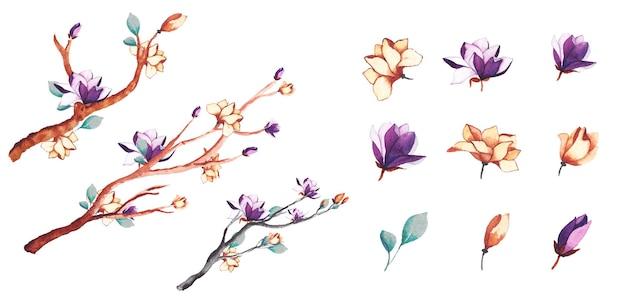 Aquarelle fleurs et branches d'arbres
