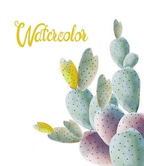 Aquarelle de fleurs de cactus de différentes couleurs
