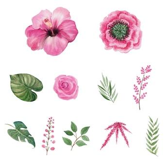 Aquarelle de fleurs colorées