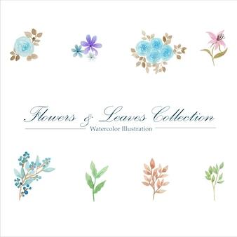 Aquarelle fleurs et feuilles collection
