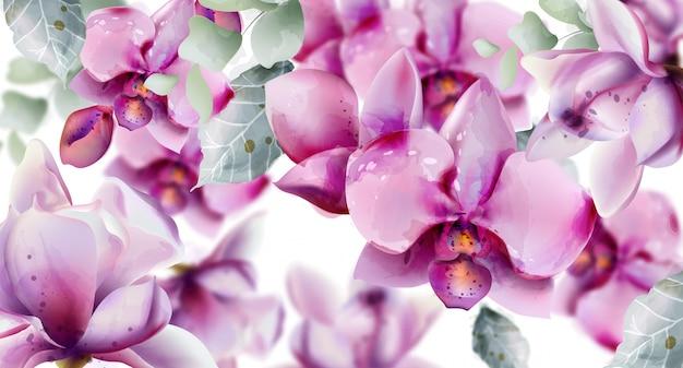 Aquarelle de fleurs d'orchidées.