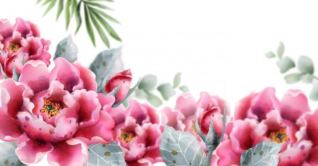 Aquarelle de fleurs de pivoines. illustration de décor floral délicat