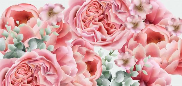 Aquarelle de fleurs de printemps pivoines