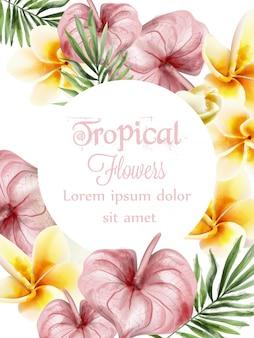 Aquarelle de fleurs tropicales anthurium et plumeria