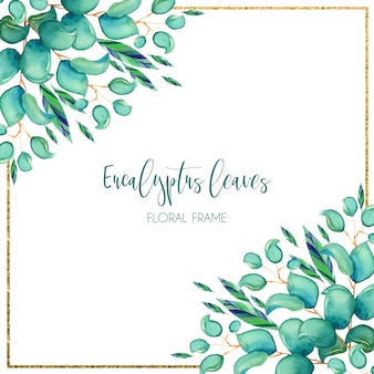 Aquarelle fond d'eucalyptus