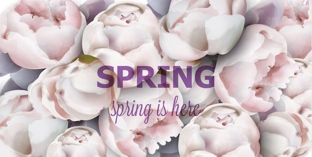 Aquarelle de fond de fleurs de pivoine printemps