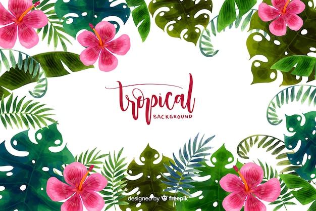 Aquarelle fond tropical