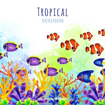 Aquarelle fond tropical