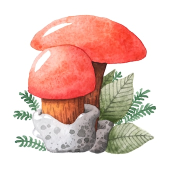 Aquarelle d'illustration de champignon