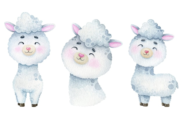 Aquarelle de lamas blancs mignons