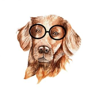 Aquarelle marron chien avec des lunettes