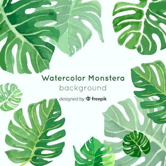 Aquarelle monstera feuilles fond