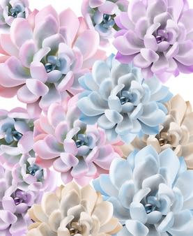 Aquarelle motif de plantes succulentes