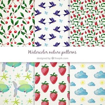 Aquarelle nature motif collection