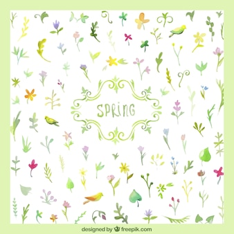 Aquarelle plantes carte de printemps