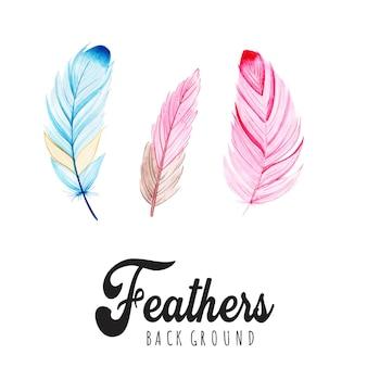 Aquarelle plumes fond