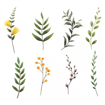 Aquarelle style feuilles et fleurs