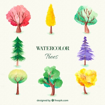 Aquarelle trees collection