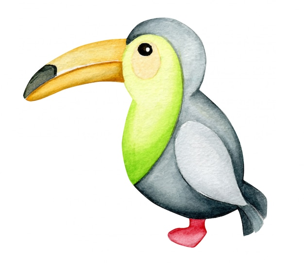 Aquarelle unique animal toucan isolé