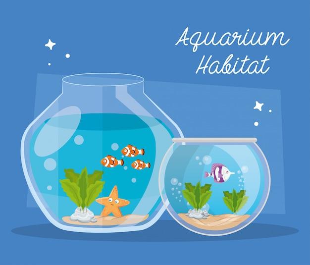 Aquariums poissons avec de l'eau, aquariums animaux marins